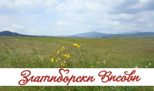 blog.zlatiborskivisovi.rs