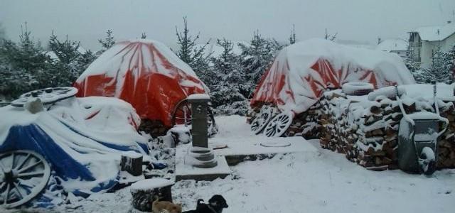 Prvi sneg